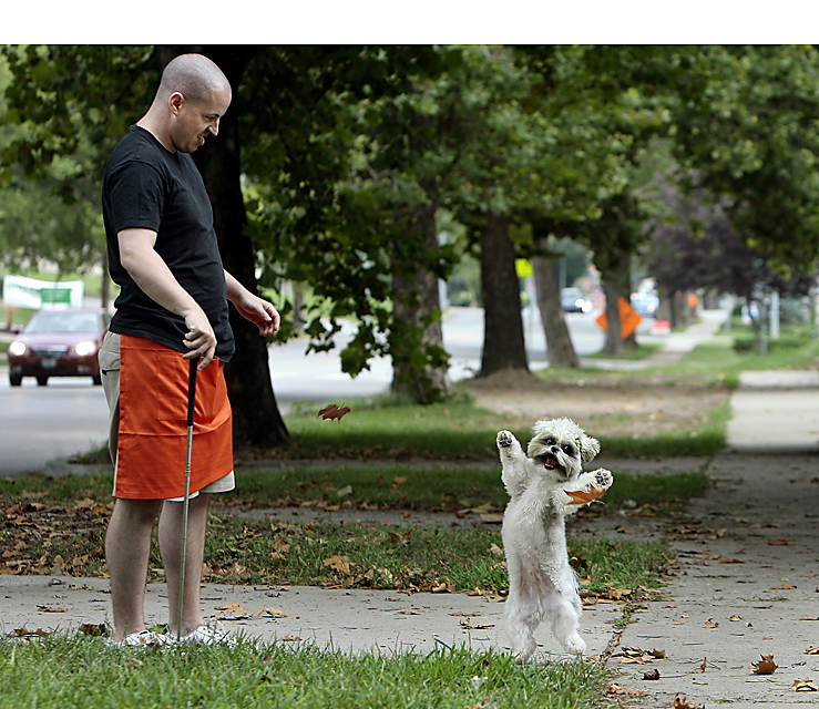 Moscato, the 1 1/2-year-old Maltese-Shih Tzu mix, chases leaves that Charlie Schneider of Kansas City tossed for him.